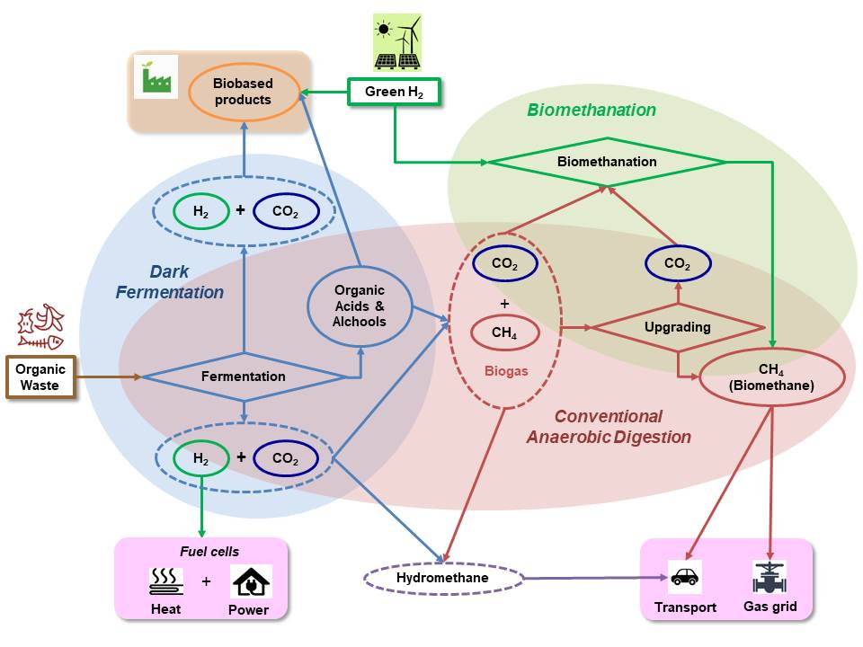 Flow diagram representing different steps of three major biological processes: dark fermentation, conventional anaerobic digestion and bio-methanation.