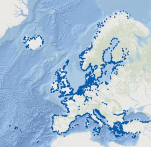 Location blue dots