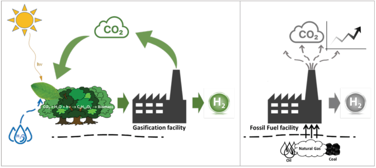 Comparison between the closed CO2 cycle obtained with biomass gasification and the open cycle in the fossil process where materials from underground are converted to CO2 emitted to the environment.