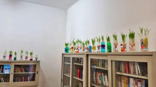Scuola secondaria di primo grado San Giovanni Bosco. Interno di una classe, esempio di riuso creativo: piante in bottiglie riciclate e colorate, trasformate in vasi